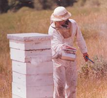 Dick Turanski Beekeeping in 1975