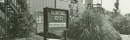 GloryBee's Office in the late 1970's