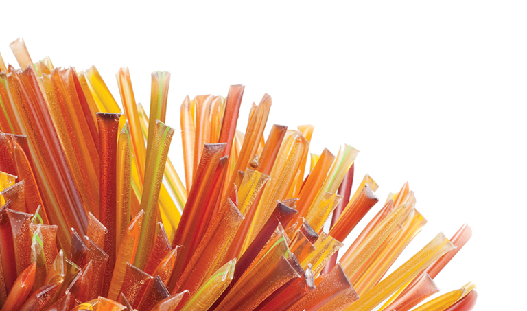 Save up to 25% on Select HoneyStix for National Honey Month!