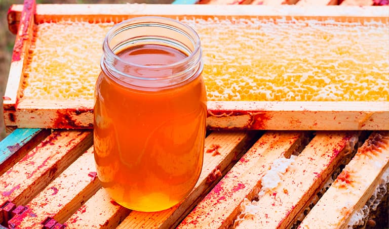 Stock your honey shelf with GloryBee and save!