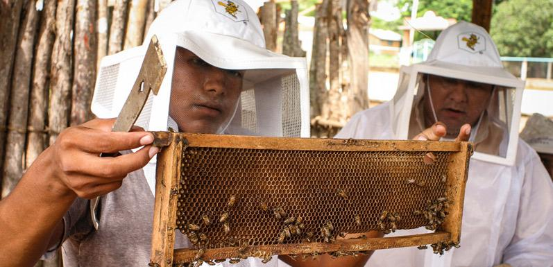 GloryBee Non-GMO, Fair Trade Honey- Doing the Right Thing Matters!