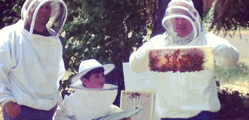 Alan's Bee Chronicles - Beekeepers Visit