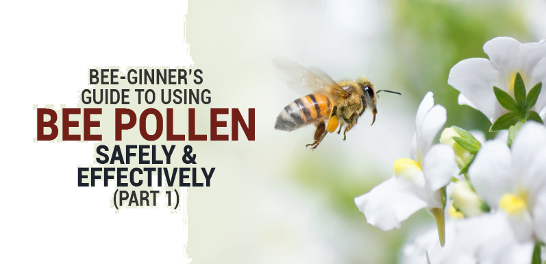Bee-ginner's Guide to Using Bee Pollen Safely and Effectively (Part 1)