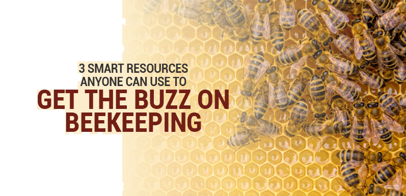 3 Smart Resources Anyone Can Use to Get the Buzz on Beekeeping