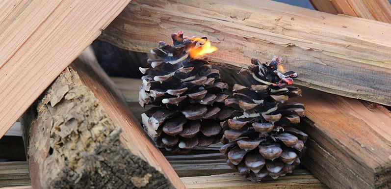 Pine Cone Fire Starters