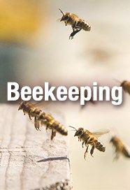 GloryBee Wholesale Beekeeping